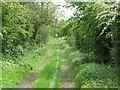 NT9541 : Green lane by Richard Webb