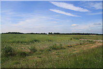 TM1880 : View over Thorpe Abbotts airfield by Glen Denny