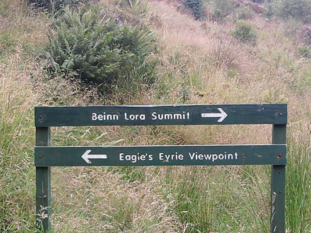 Signpost at the crossroads on Beinn Lora path .