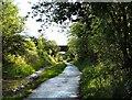 SJ9594 : Two Bridges by Gerald England