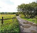 SJ9694 : Green Lane by Gerald England