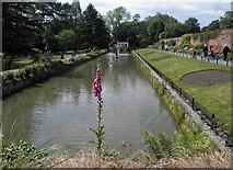 SE3238 : Canal gardens, Roundhay Park, Leeds by Steve  Fareham