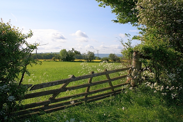 Field Access off Longreave Lane
