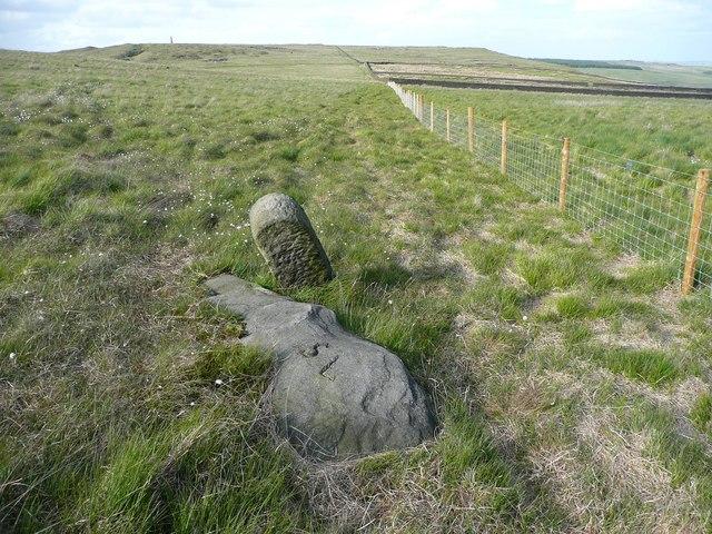 Boundary stone, Langfield Common