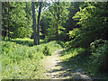 TL7906 : Post 12, Nature Trail by Roger Jones
