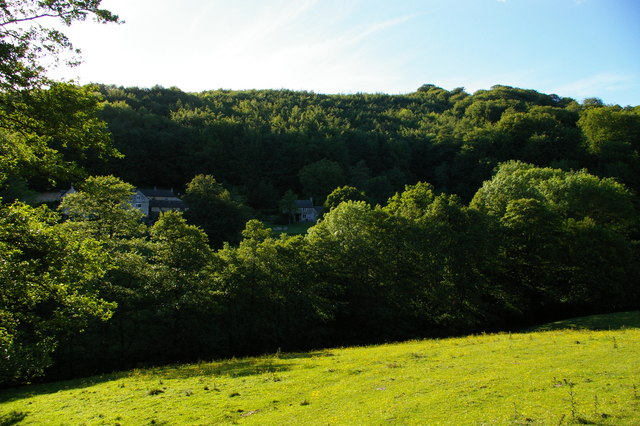 Far End, Sheepscombe: Woody's Cottage