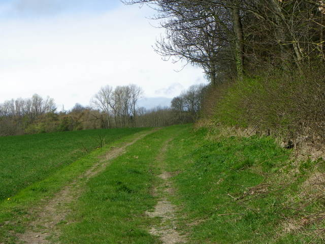 Track, Gatehouse Plantation
