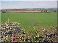 SO8841 : Farmland at Hill Croome by Trevor Rickard
