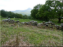 SH7357 : View across the Afon Llugwy valley by Dave Spicer