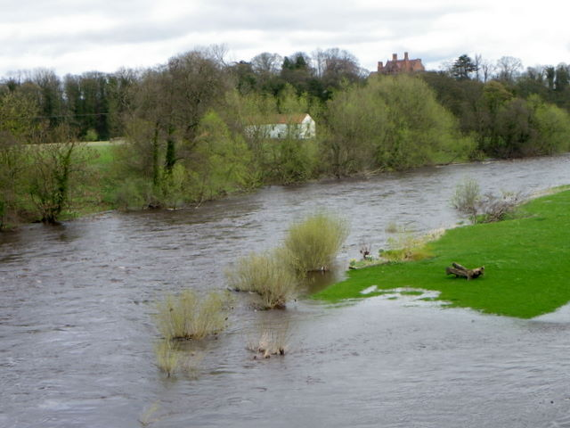 River Tees, Piercebridge