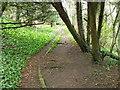 NZ2115 : Footpath, Cliffe by Maigheach-gheal