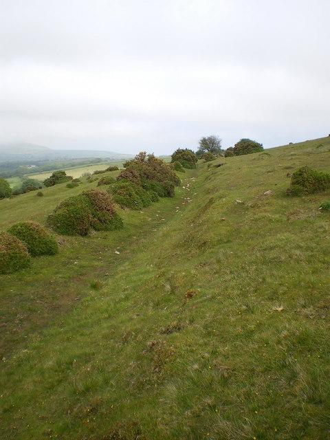 Ancient trackway on Foel Drygarn