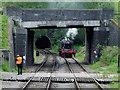 SJ9853 : Bridge, locomotive and tunnel portal near Cheddleton, Staffordshire by Roger  Kidd