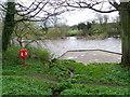NZ1616 : River Tees, Gainford by Maigheach-gheal
