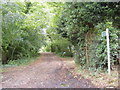 TM2265 : Bridleway to St. Nicholas Church by Adrian Cable