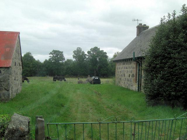 Rosemount farm buildings