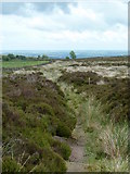 SK3069 : Moorland footpath, Beeley Moor access land by Andrew Hill