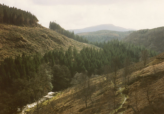Footpath climbing above the Afon Mawddach