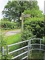 SJ5460 : Sign to Beeston Castle by Jeff Buck