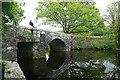 SX5380 : Hill Bridge by Graham Horn
