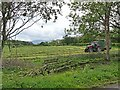 NY3743 : Freshly mown silage field at Lambfield Farm by Oliver Dixon