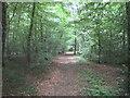 TQ1493 : Harrow Weald Common by Nigel Cox
