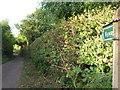 ST5457 : Villice Lane by James Ayres