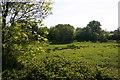 TQ4013 : Greenwich Meridian near North End stream. by steve ridley