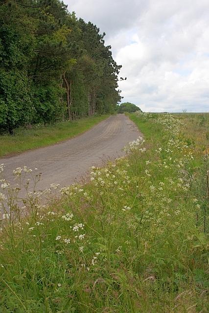 Unclassified Road, Sherburn Brow