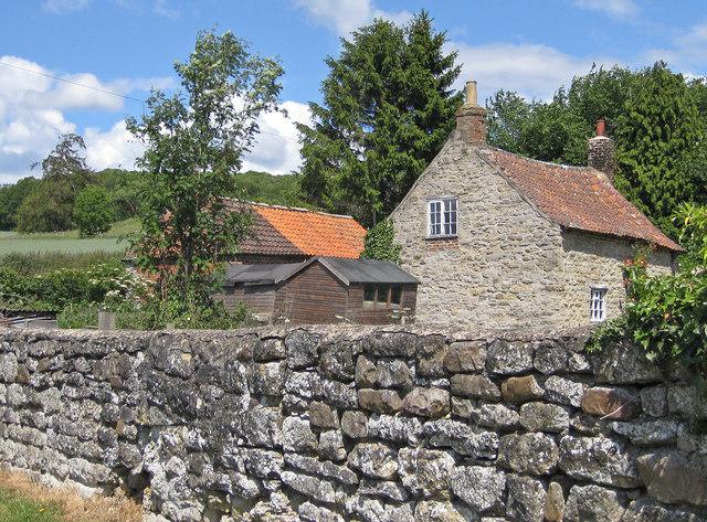 Old stone wall, Sinnington