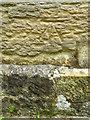 TQ7718 : Bench Mark, St John the Baptist's Church by Maigheach-gheal