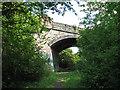 TL4960 : Bridge over the Cambridge-Mildenhall railway by John Sutton