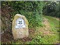 SW6932 : Footpath onto Porkellis Moor by Rod Allday