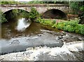 SJ8990 : The end of the River Goyt by Gerald England