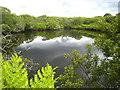SW6932 : Pool at Lower Porkellis by Rod Allday