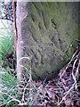 NZ1620 : Bench Mark, Ingleton by Maigheach-gheal