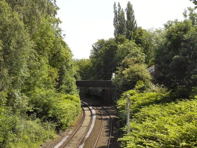 Currier Lane Bridge