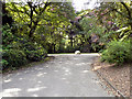 SJ9598 : Stamford Park by David Dixon