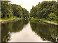 SD9700 : Huddersfield Narrow Canal by David Dixon