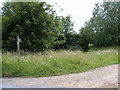 TM2664 : Footpath to High Road by Geographer