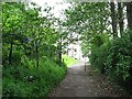 NS6466 : Path, Hogganfield Park by Richard Webb
