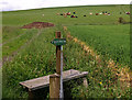 NS4569 : Stile and way marker by wfmillar