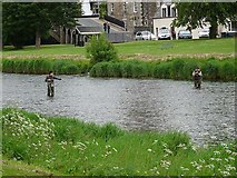 NT2540 : Fishing the Tweed by Oliver Dixon
