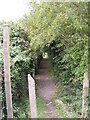 TM2764 : Footpath to Charnwood Mill by Adrian Cable