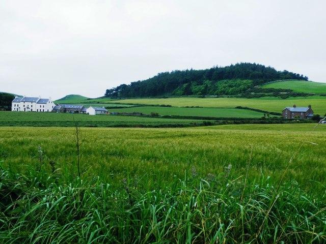 Knockaloe Beg & Plantation