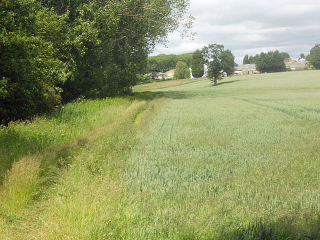 Field boundary and Lower Reule Farm