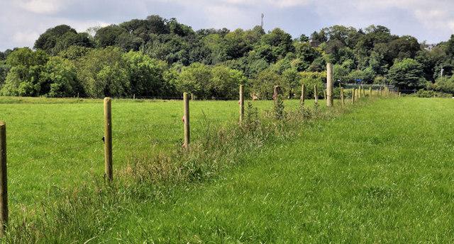 Electric fence, Lambeg