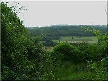 SU8712 : View across the Lavant Valley near Singleton by Shazz
