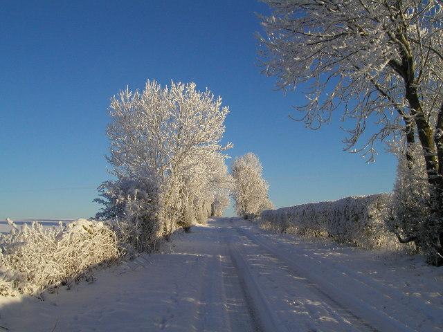 Winter track 2010