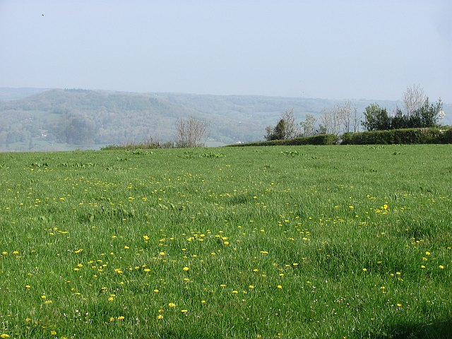 View over Honiton